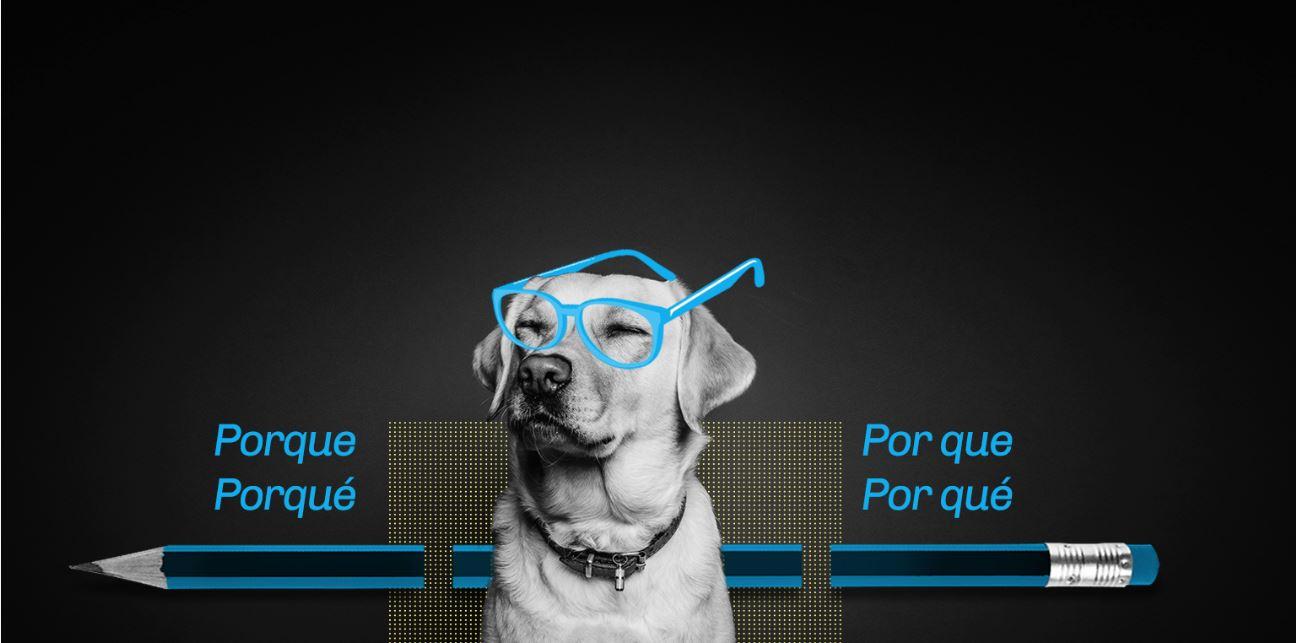 Diseño de cursos interactivos