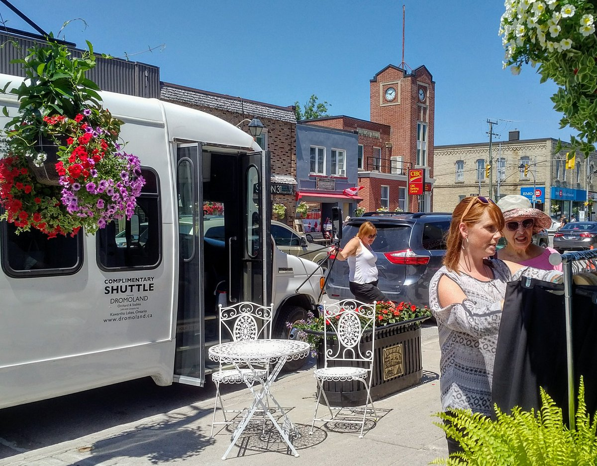 Stop and shop! Danielle VanGennip of Dunsford takes the opportunity to browse at Butterfly Boutique in Fenelon Falls, part of the first test run of the local weekly shopping bus.  Photo - Mike Perry