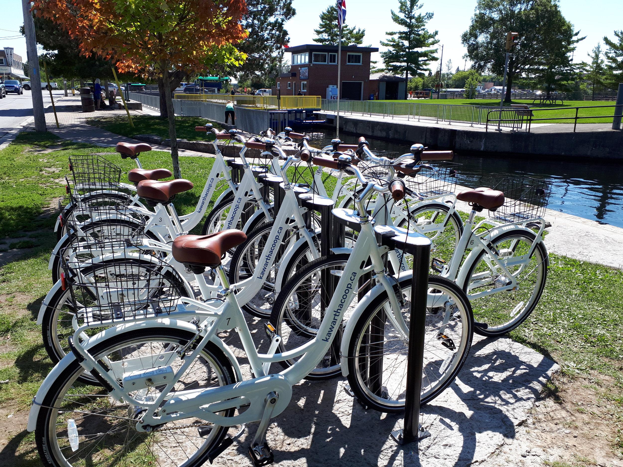 bikesharefenelonfalls1.jpg