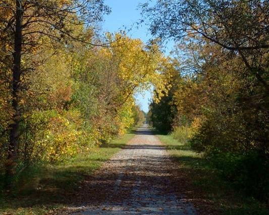 Photo credit: Ontario Bike Trails website