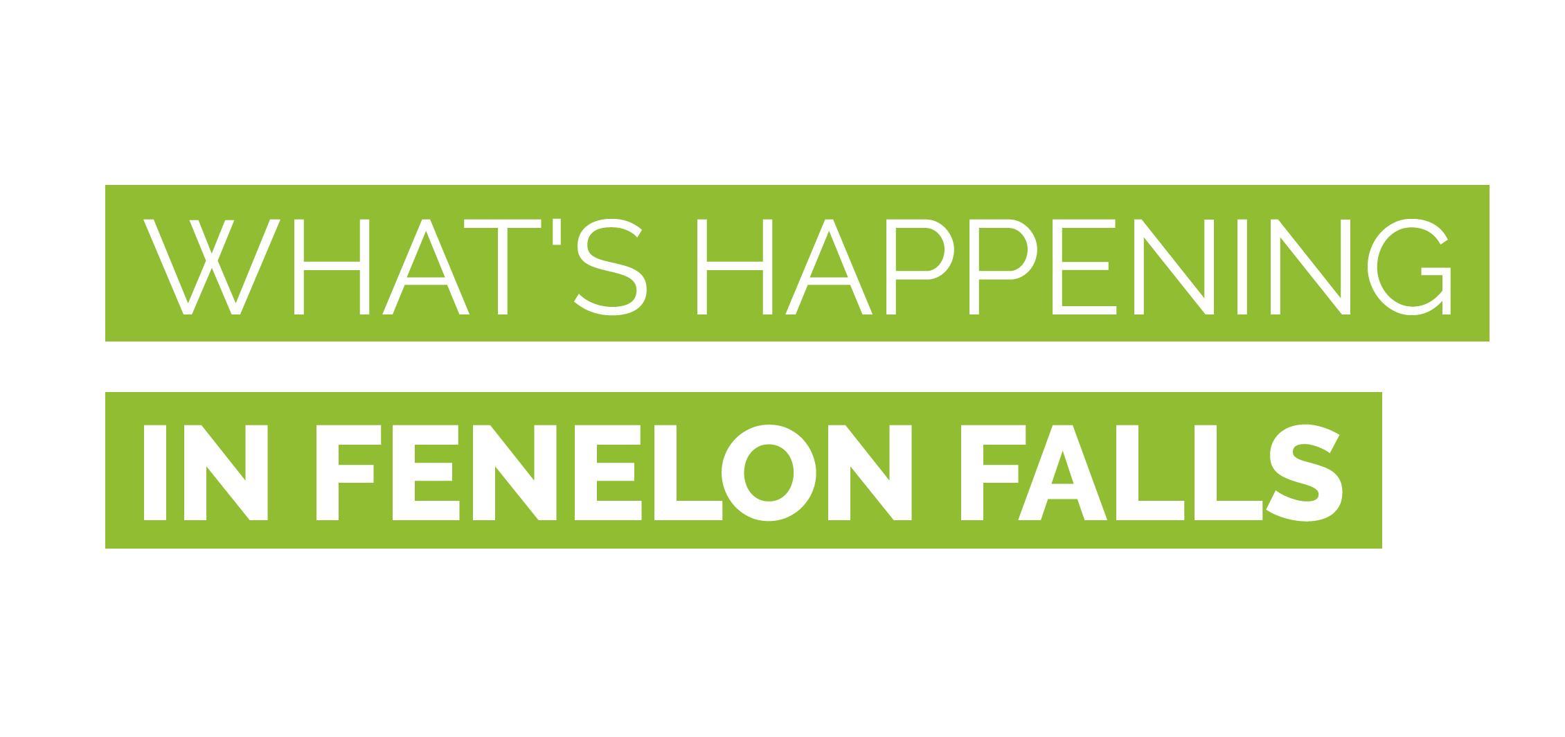 Fenelon falls-Banners-05.png