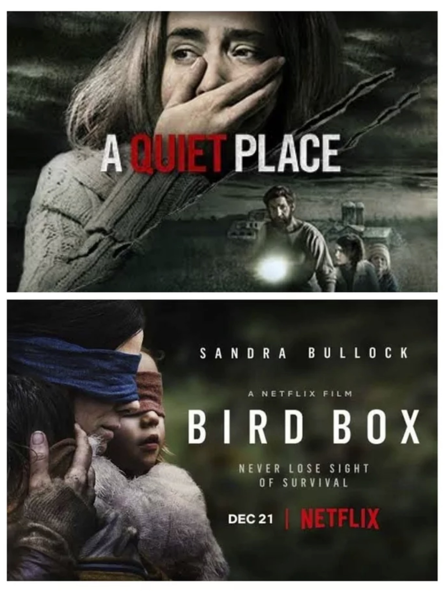 Senses Working Overtime - A Quiet Place and Bird Box