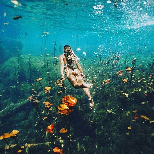 Wow! What an amazing shot by @livingforsun of the amazing beauty to be found beneath the blue of the Tulum cenotes... 🏞🙏🏼🏞