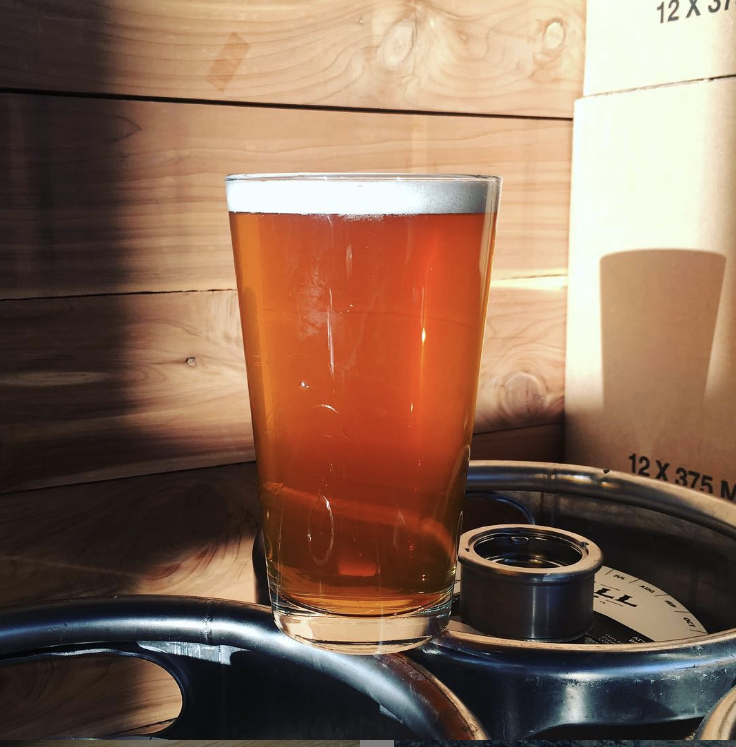 """Zwickel Pilsner 