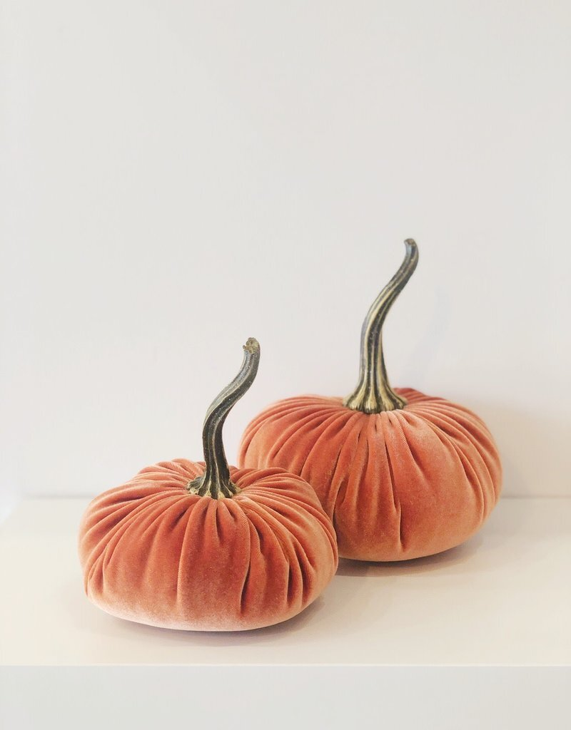 All Good Things Large Velvet Pumpkin ($20) - This plush pumpkin is the perfect way to elevate your seasonal decorating game.