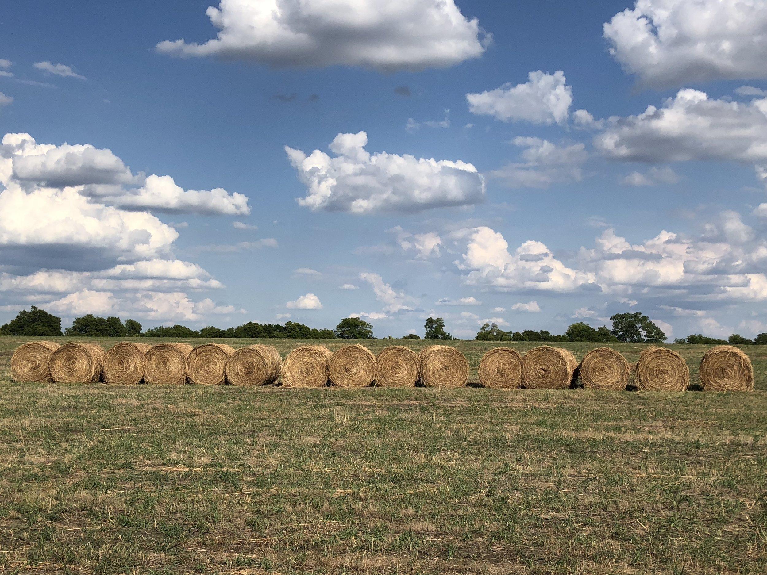 Hay Bales and Clouds.JPG