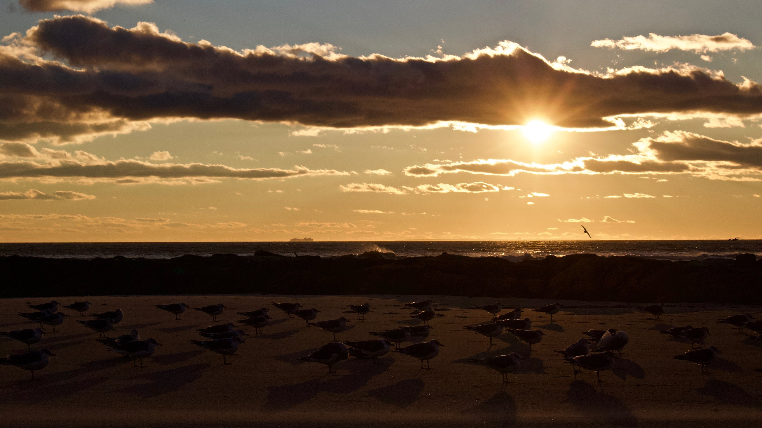 Sunset Formation @ Long Beach
