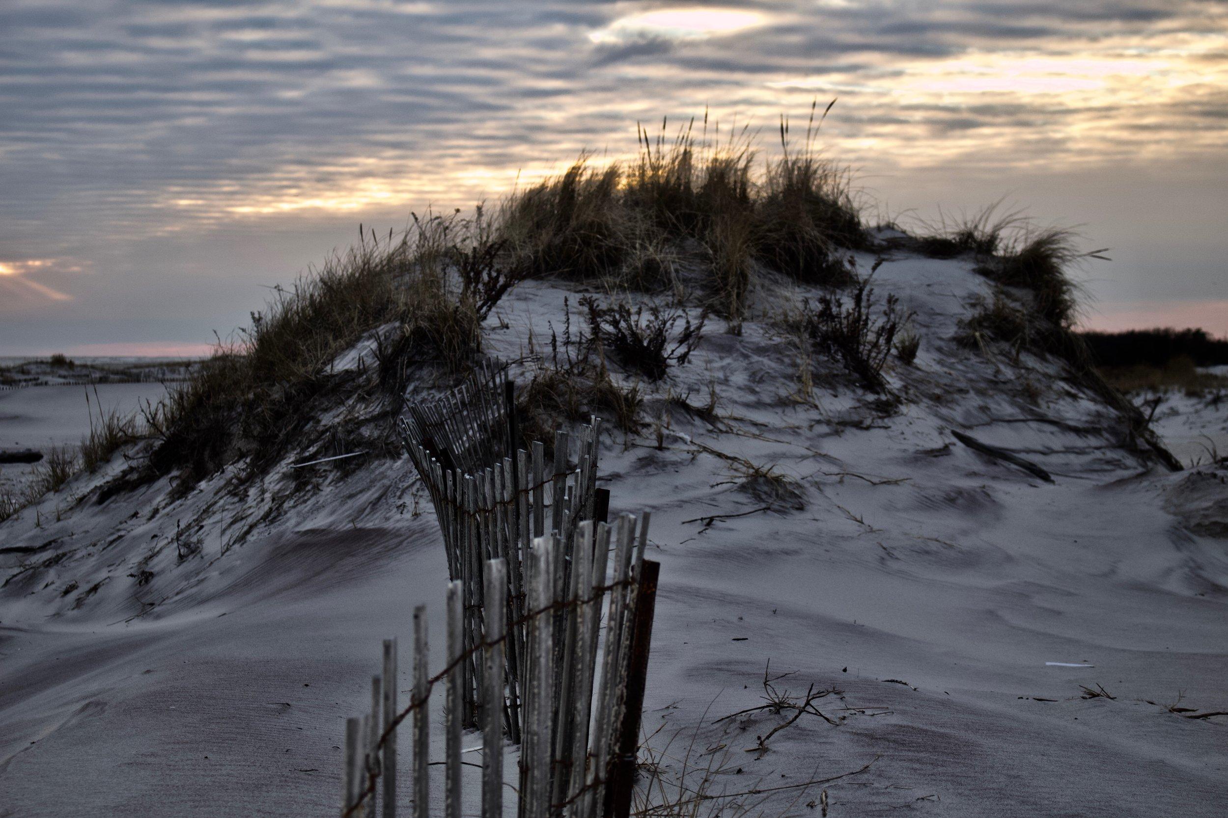 Shore Fences @ Jones Beach State Park