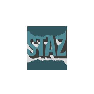 lejdastaz-logo-color.png