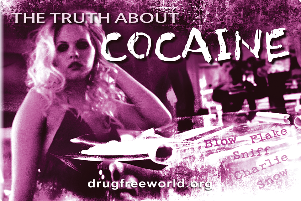The Truth About Cocaine Booklet