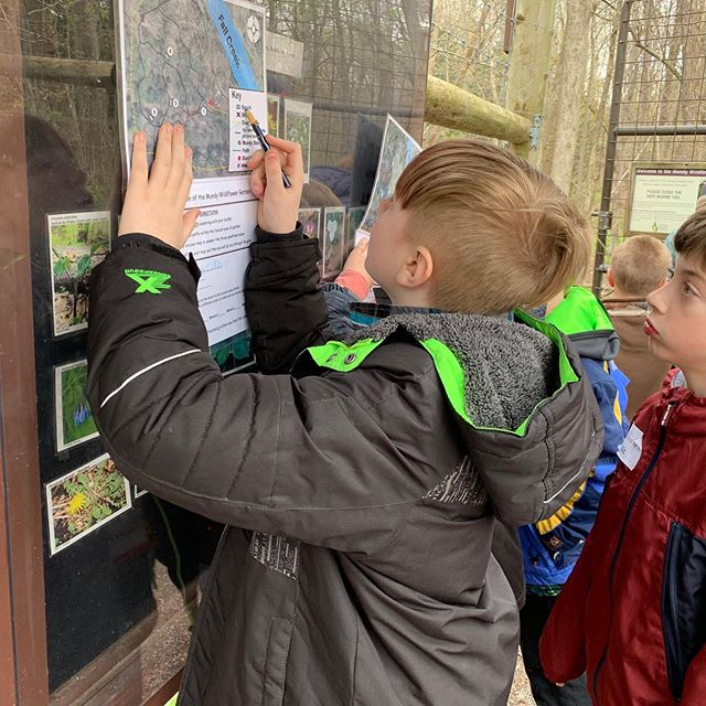 Grade 3 visits the Mundy Wildflower Garden at Cornell Botanic Gardens.  Check out the TEF Facebook page for more pictures!