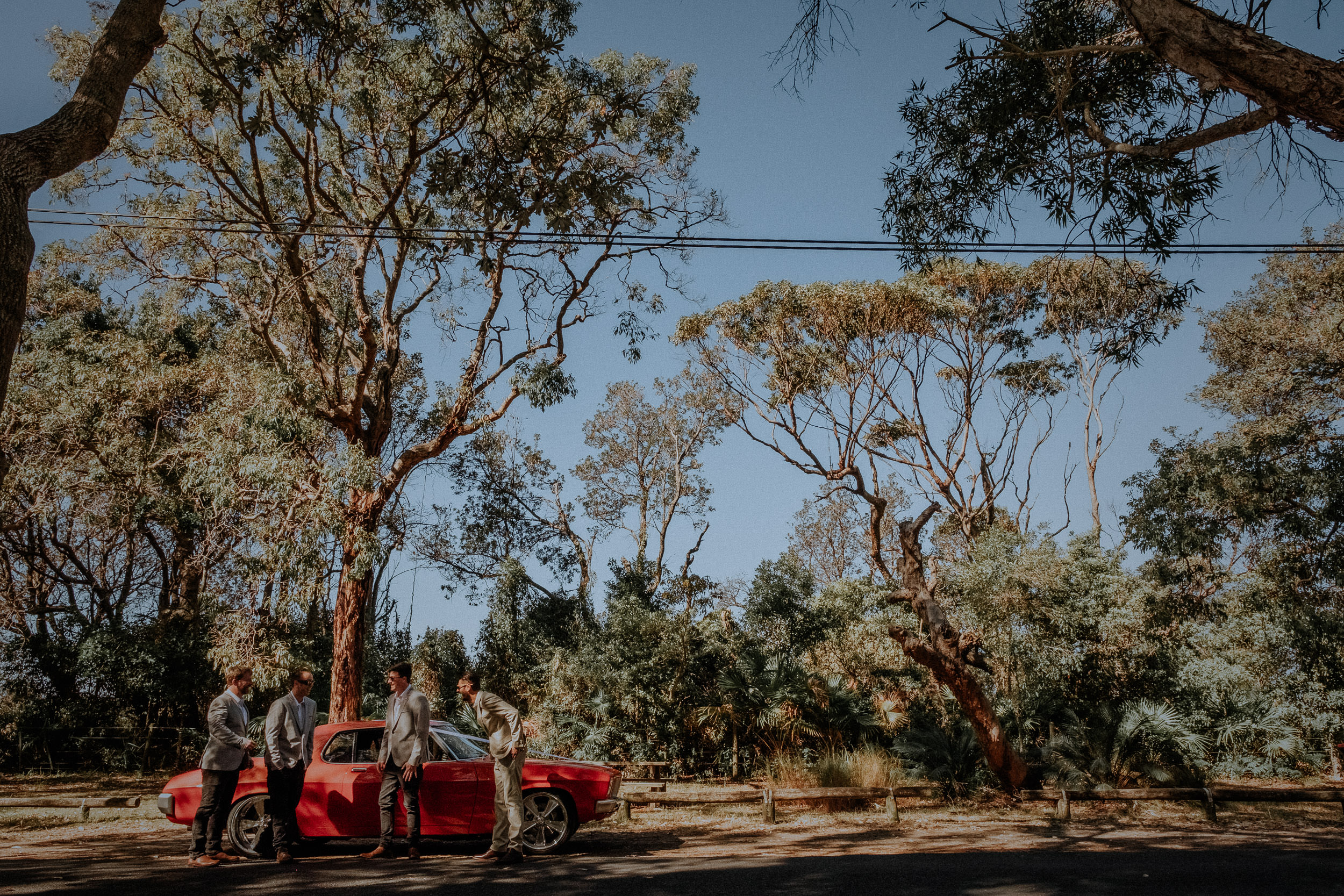 S&A Elopement - Kings & Thieves - Shred 'Til Dead - Central Coast Beach Forest Wedding - 36.jpg