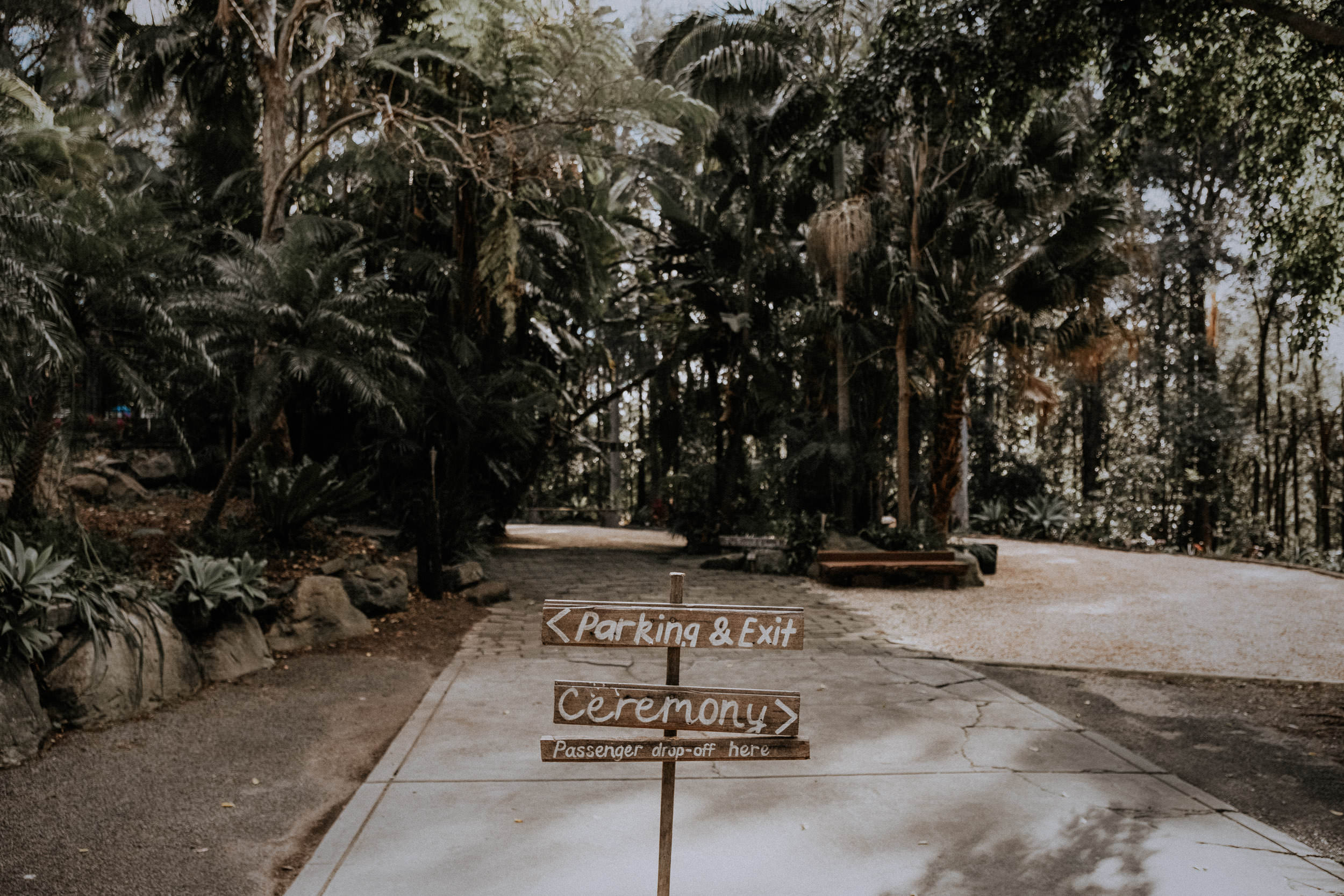 S&A Elopement - Kings & Thieves - Shred 'Til Dead - Central Coast Beach Forest Wedding - 136.jpg