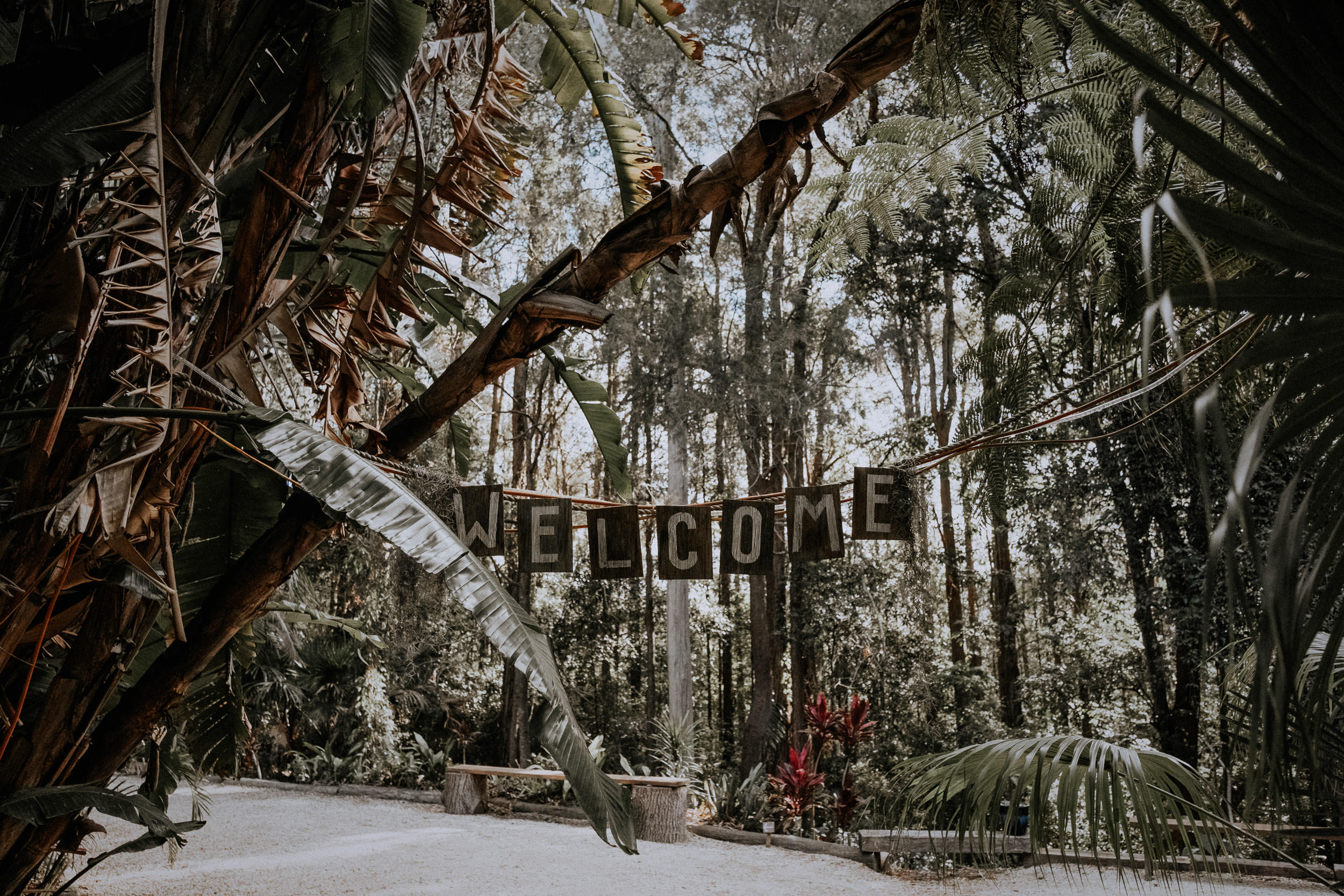 S&A Elopement - Kings & Thieves - Shred 'Til Dead - Central Coast Beach Forest Wedding - 138.jpg