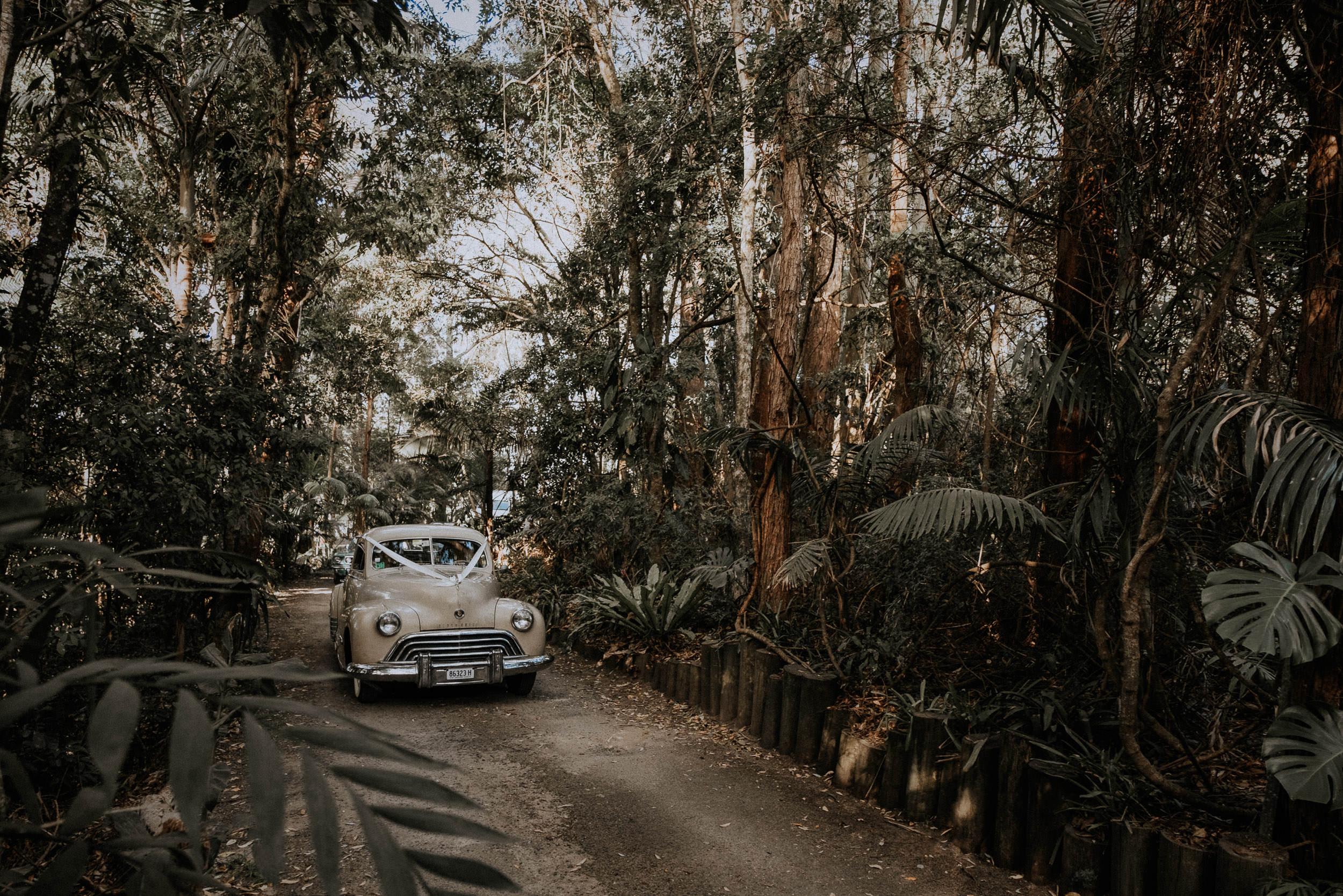 S&A Elopement - Kings & Thieves - Shred 'Til Dead - Central Coast Beach Forest Wedding - 140.jpg