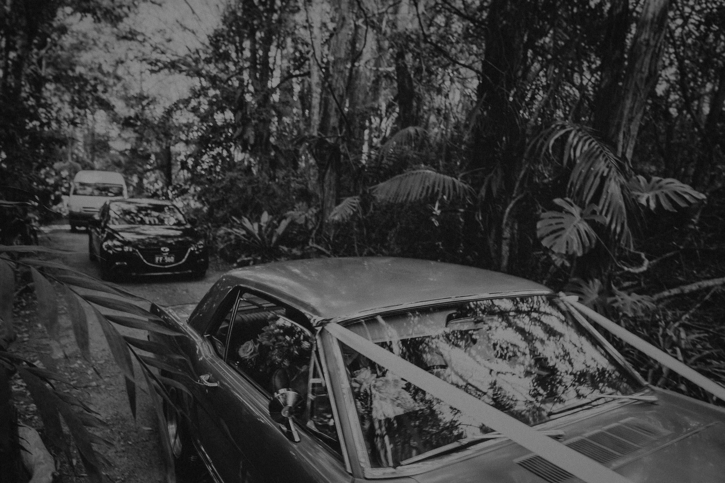 S&A Elopement - Kings & Thieves - Shred 'Til Dead - Central Coast Beach Forest Wedding - 142.jpg
