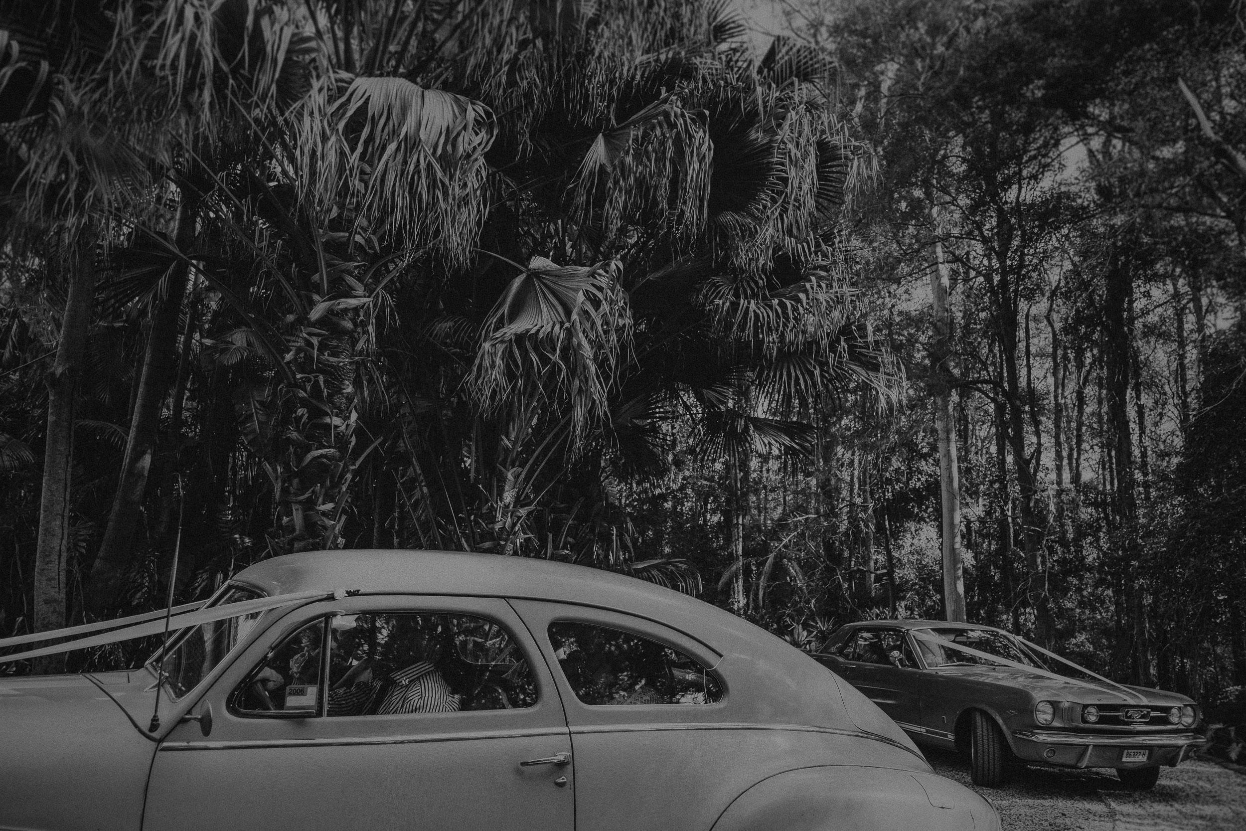 S&A Elopement - Kings & Thieves - Shred 'Til Dead - Central Coast Beach Forest Wedding - 144.jpg