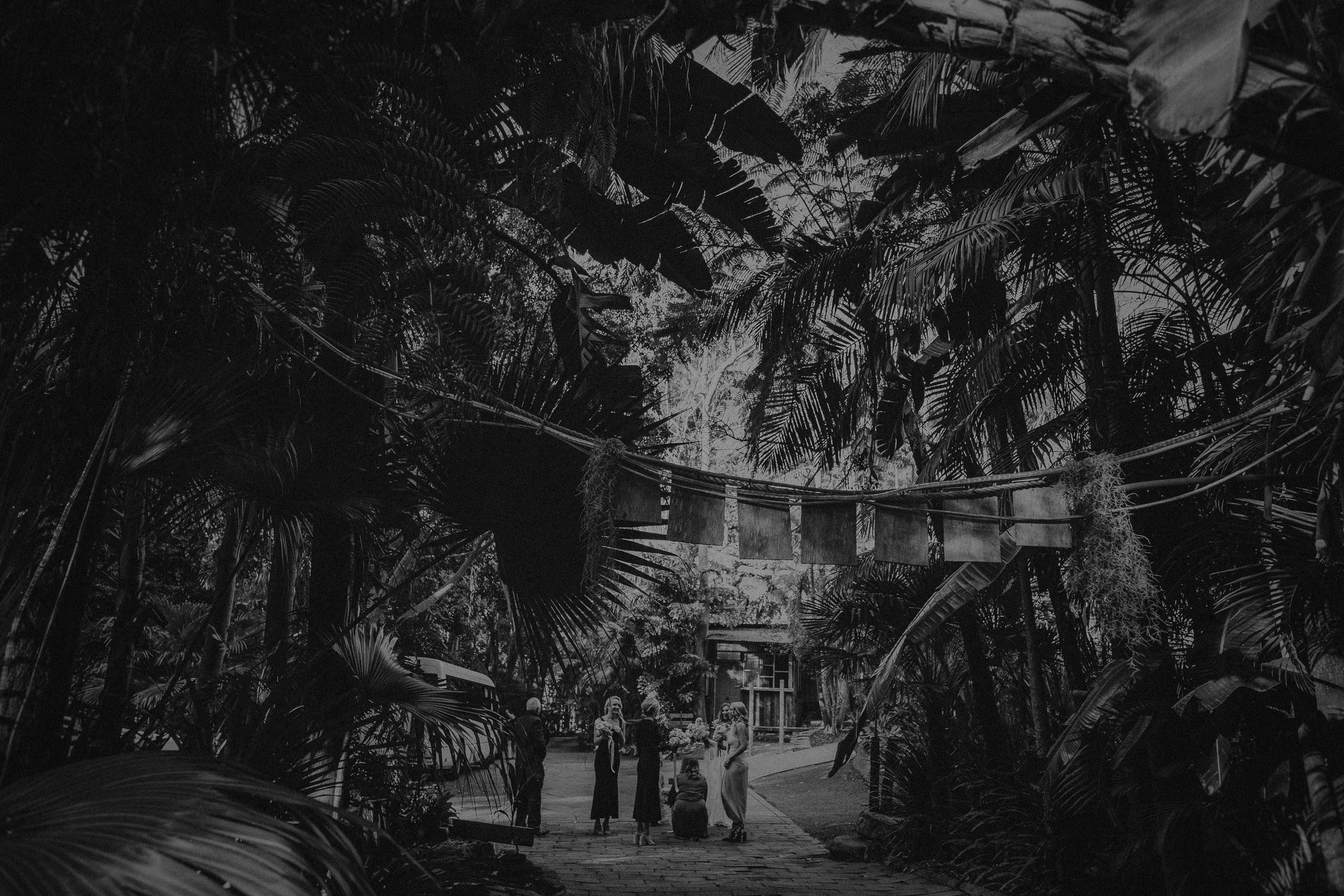 S&A Elopement - Kings & Thieves - Shred 'Til Dead - Central Coast Beach Forest Wedding - 152.jpg