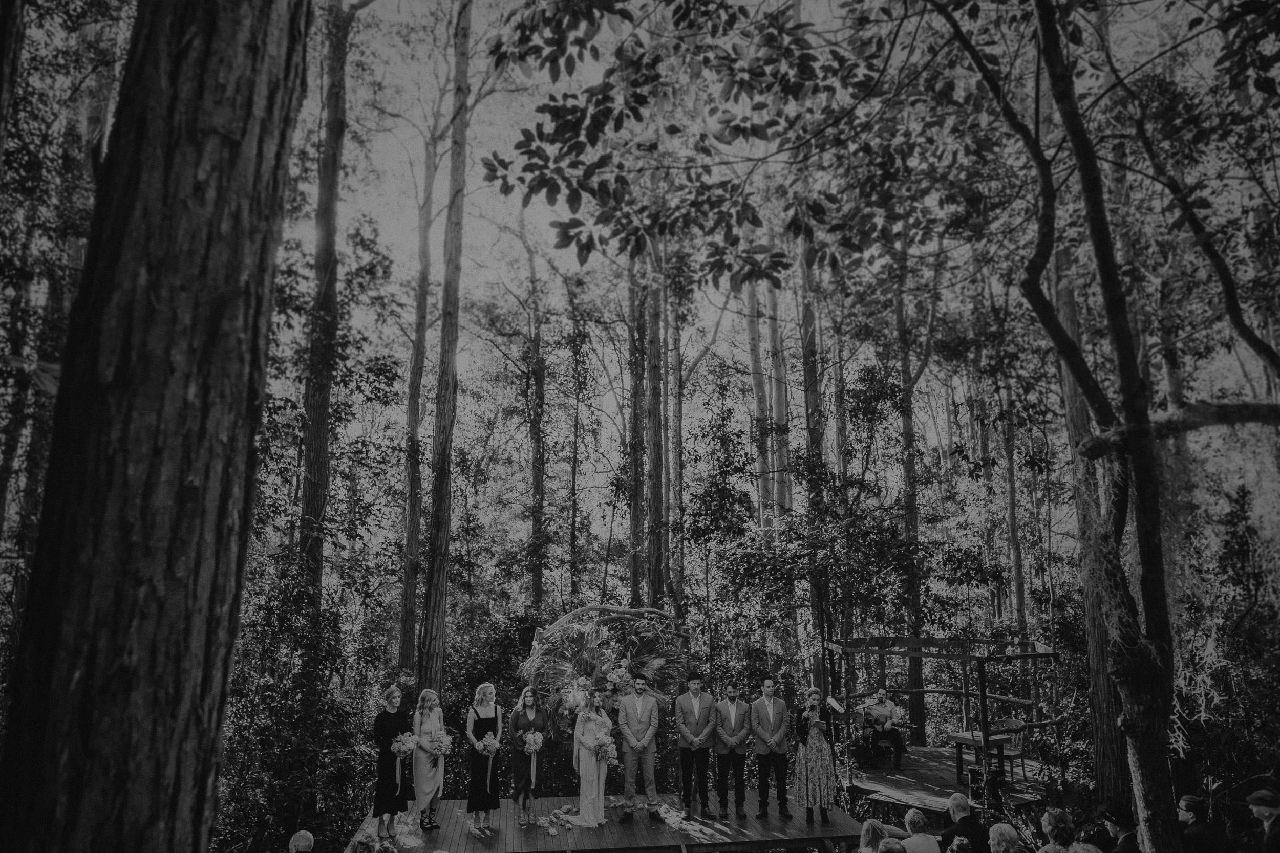 S&A Elopement - Kings & Thieves - Shred 'Til Dead - Central Coast Beach Forest Wedding - 183.jpg