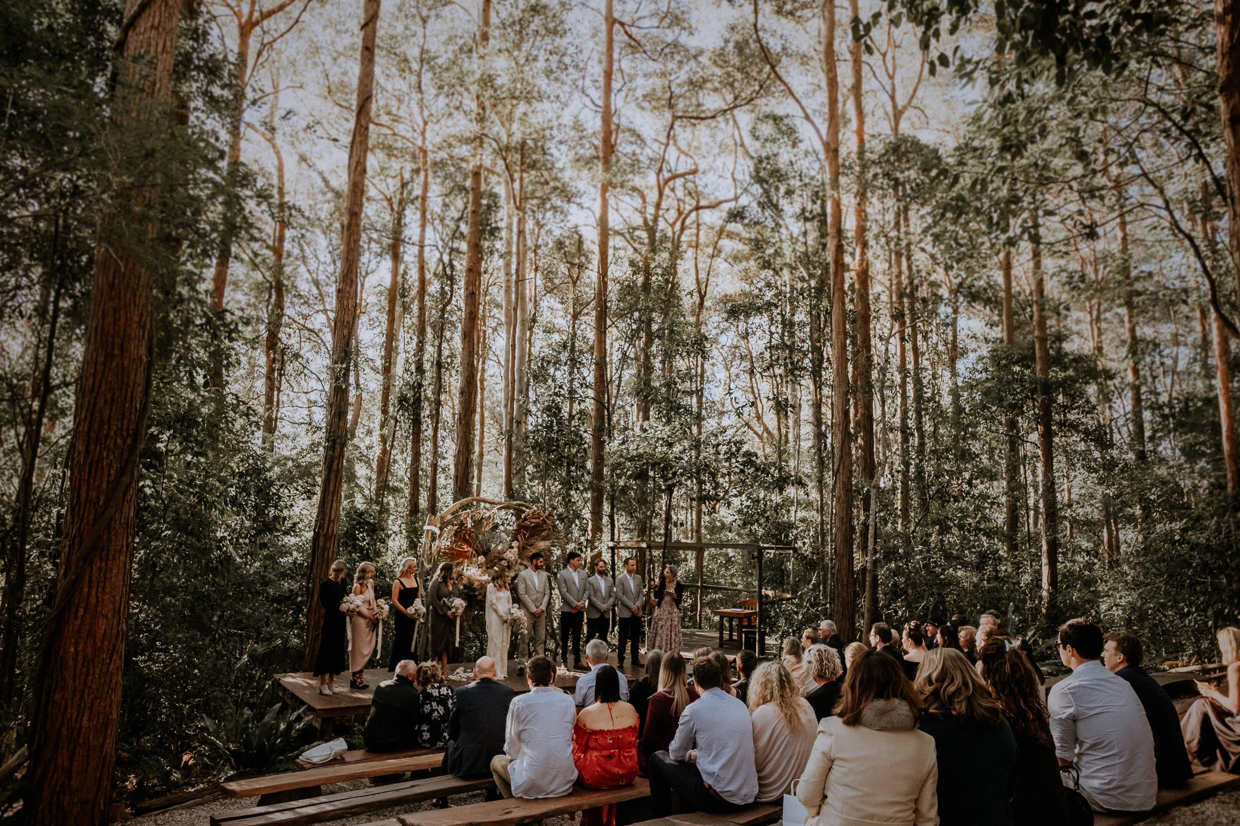 S&A Elopement - Kings & Thieves - Shred 'Til Dead - Central Coast Beach Forest Wedding - 184.jpg