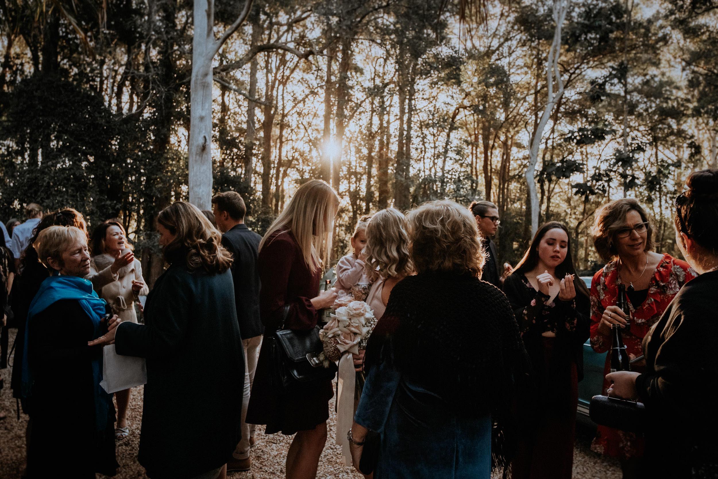 S&A Elopement - Kings & Thieves - Shred 'Til Dead - Central Coast Beach Forest Wedding - 332.jpg
