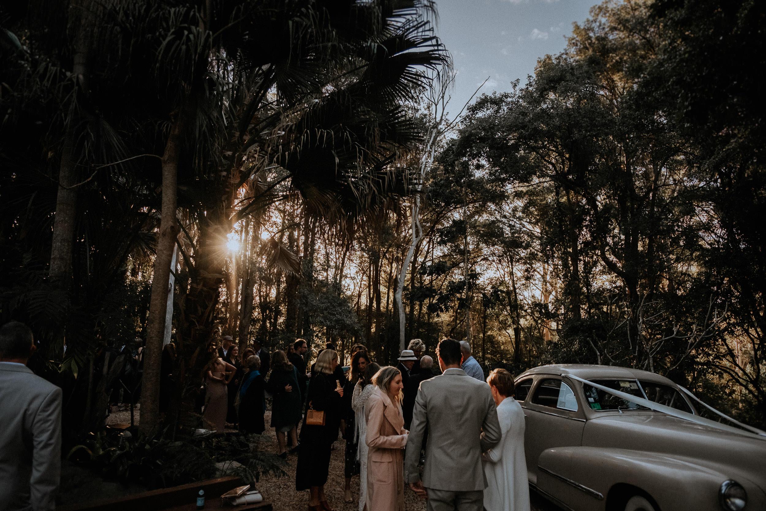 S&A Elopement - Kings & Thieves - Shred 'Til Dead - Central Coast Beach Forest Wedding - 339.jpg