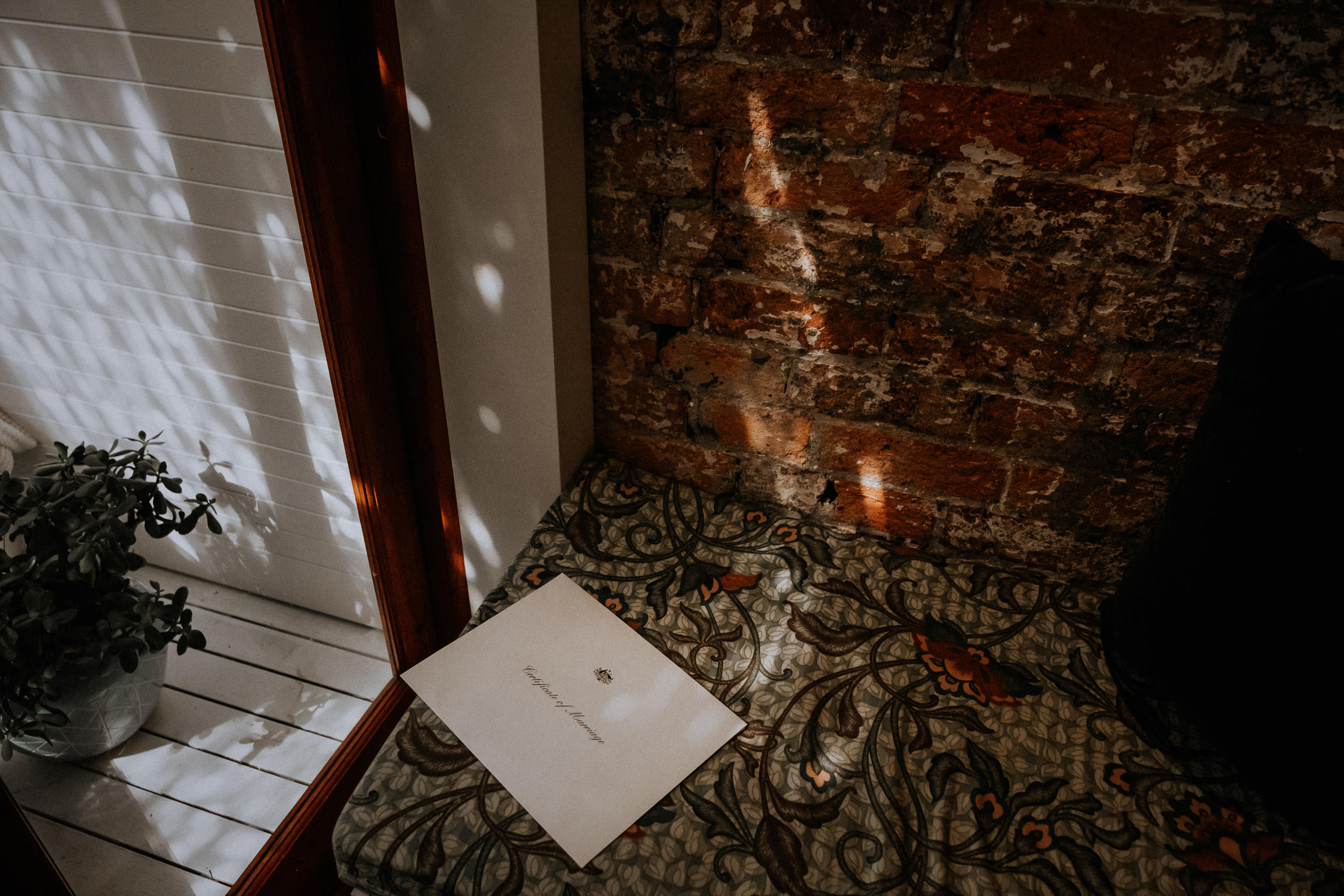 kings _ thieves - beth _ corey backyard airbnb elopement sydney - submission -222.jpg