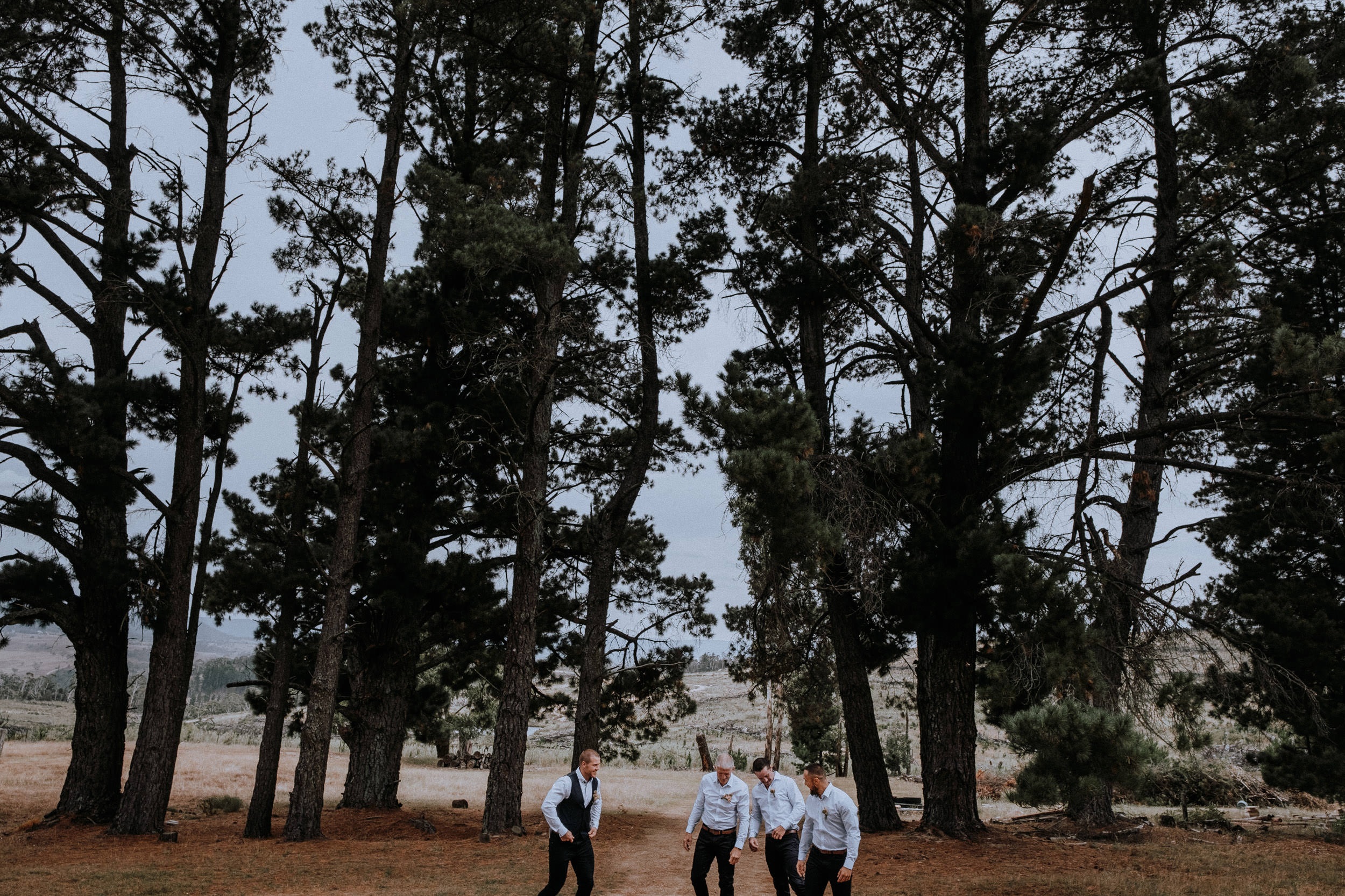 Groom and groomsmen portraits outside by the pine forest at Seclusions Blue Mountains