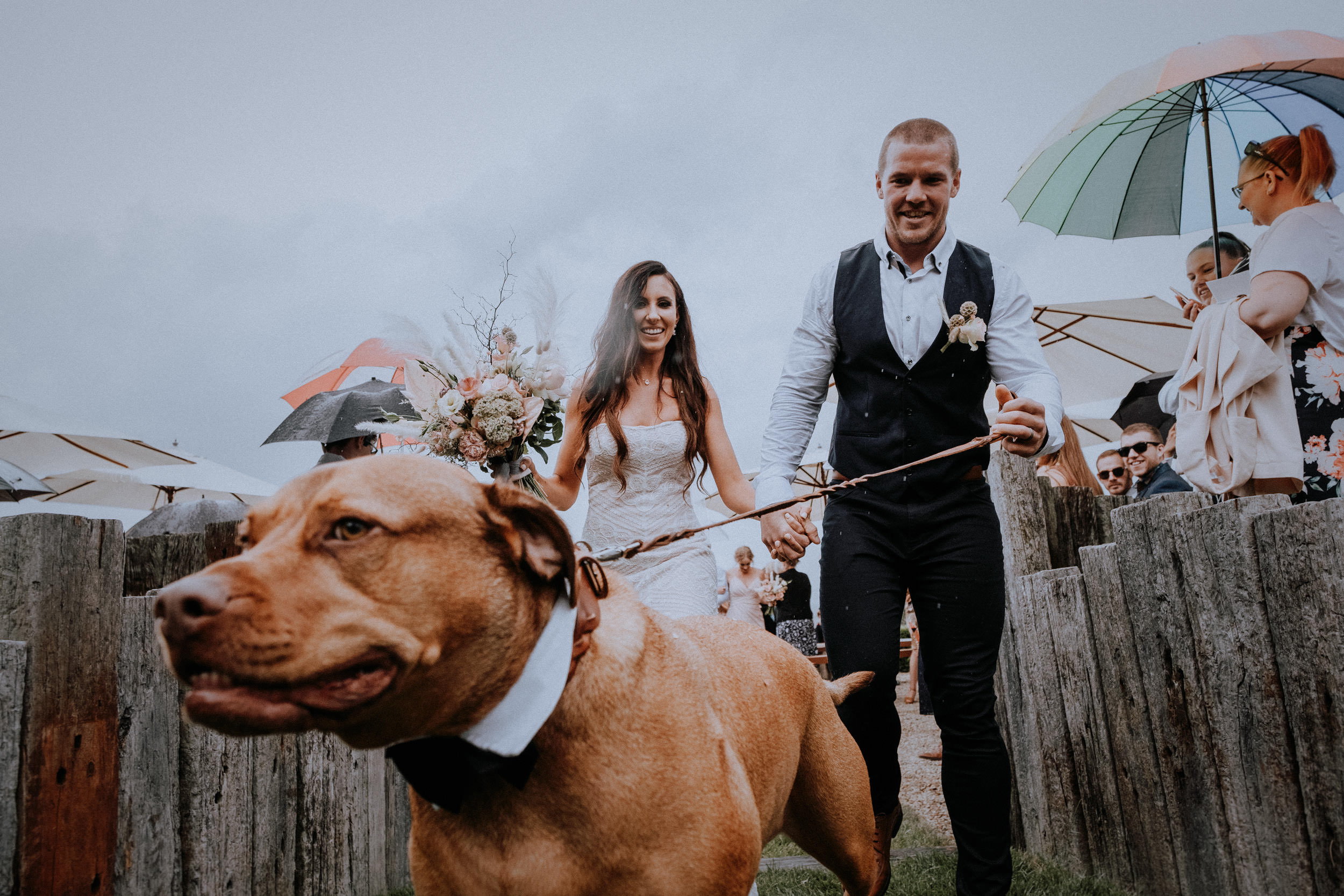 Emotional and fun rainy wedding with doggo at Seclusions Blue Mountains