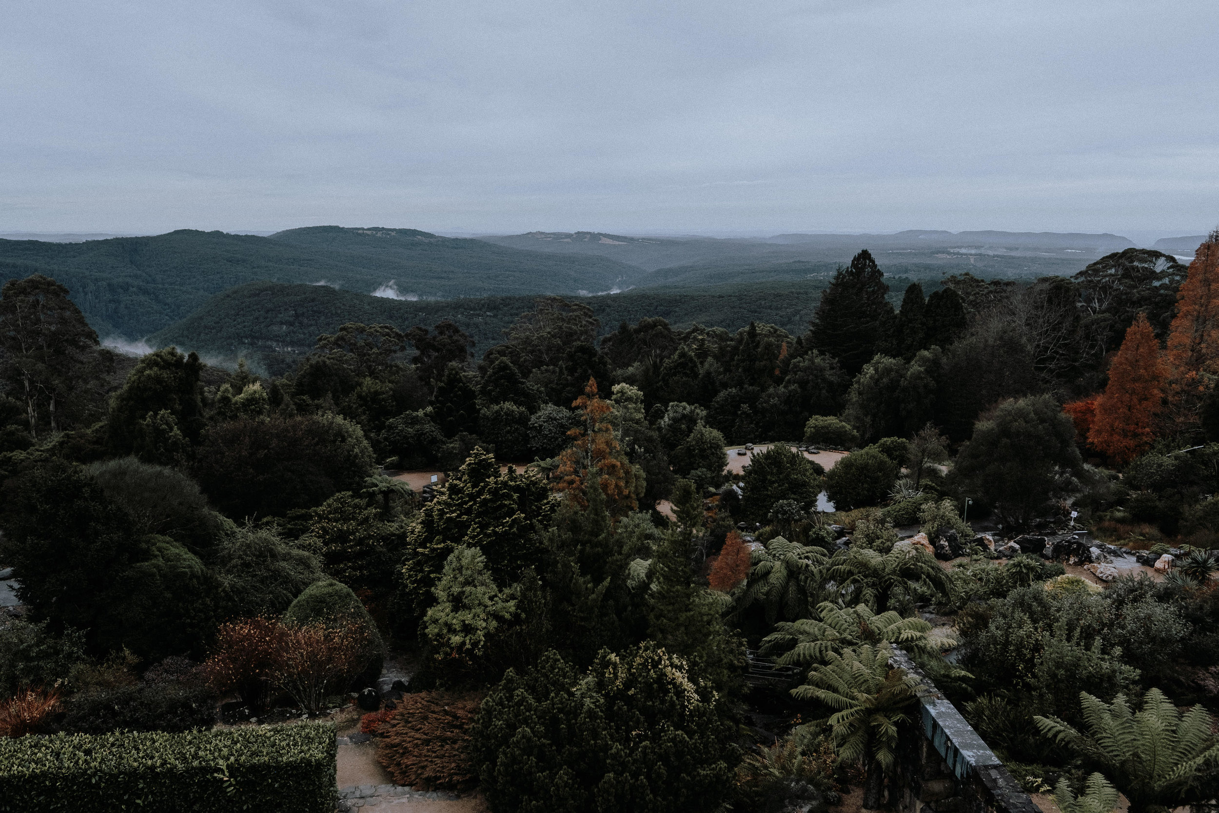 The view from Mount Tomah Botanic Gardens viewing deck