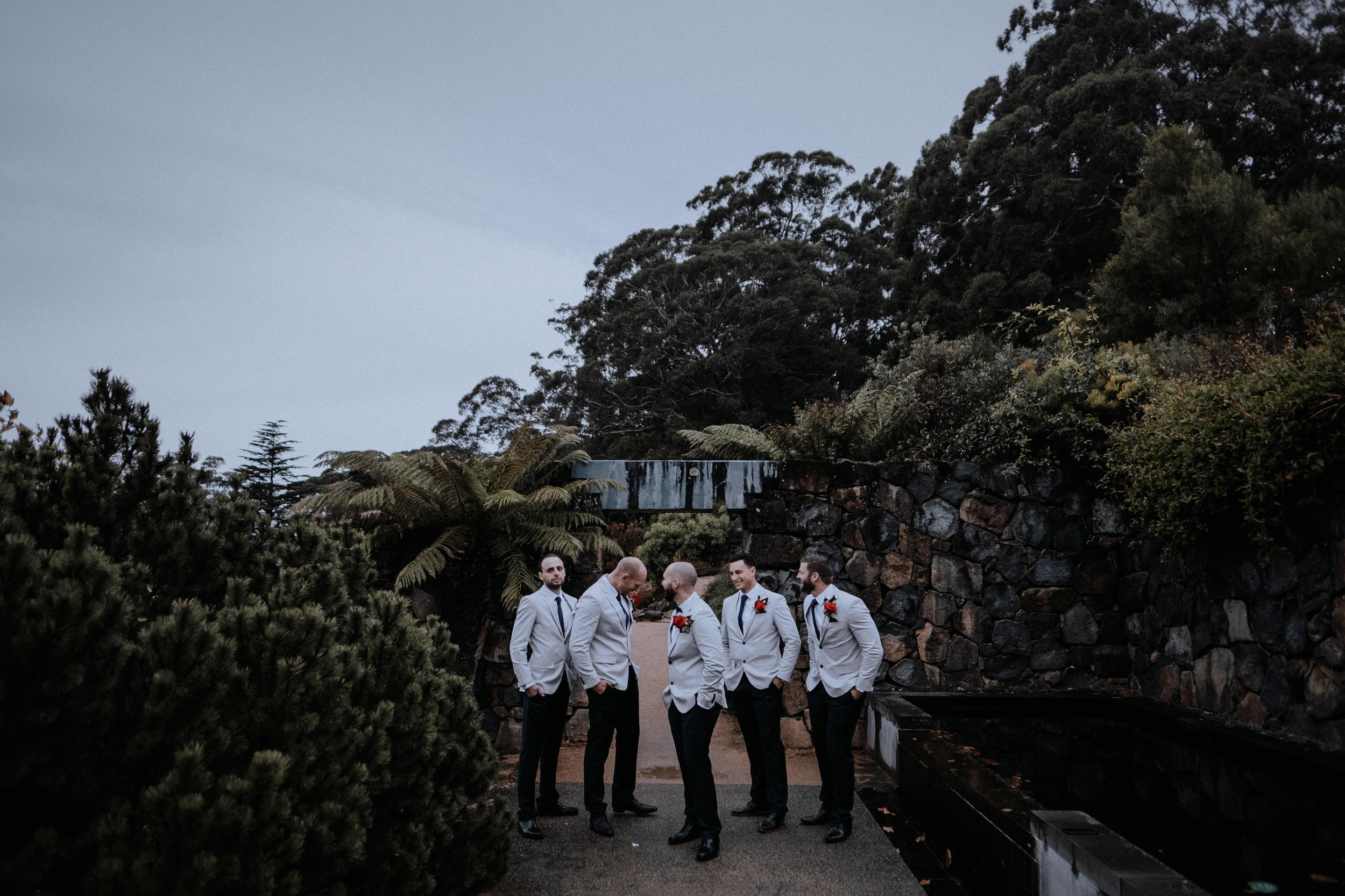 A groom and his groomsmen at Mt Tomah Botanic Gardens
