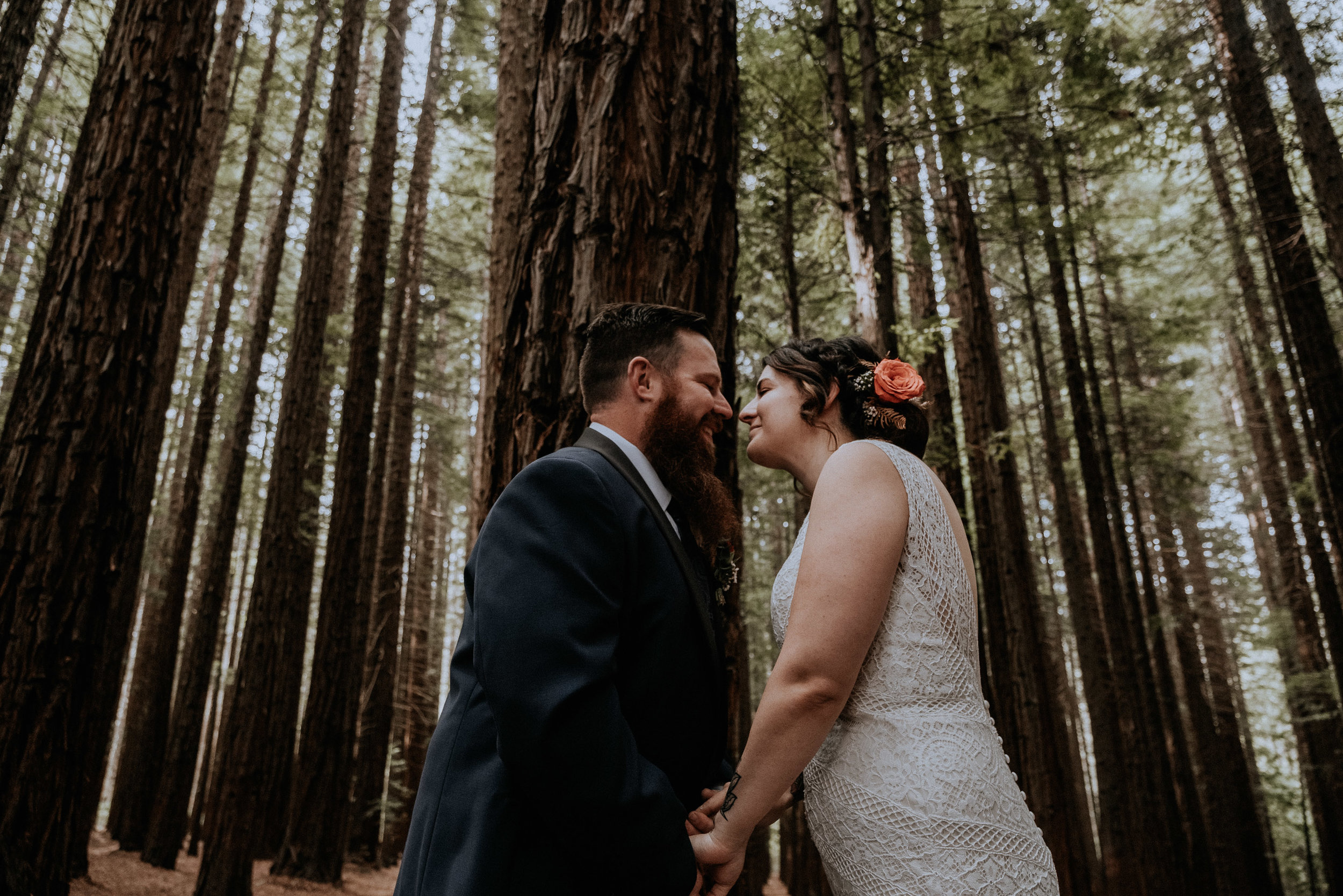 A bride and groom's first kiss at their small wedding, candidly captured with intimate vibes, in the Redwood Forest in Warburton, near Melbourne