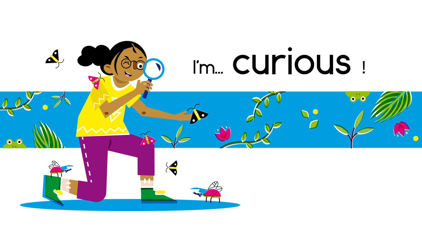 Curious - Vector Illustration © Emeline Barrea, All rights reserved