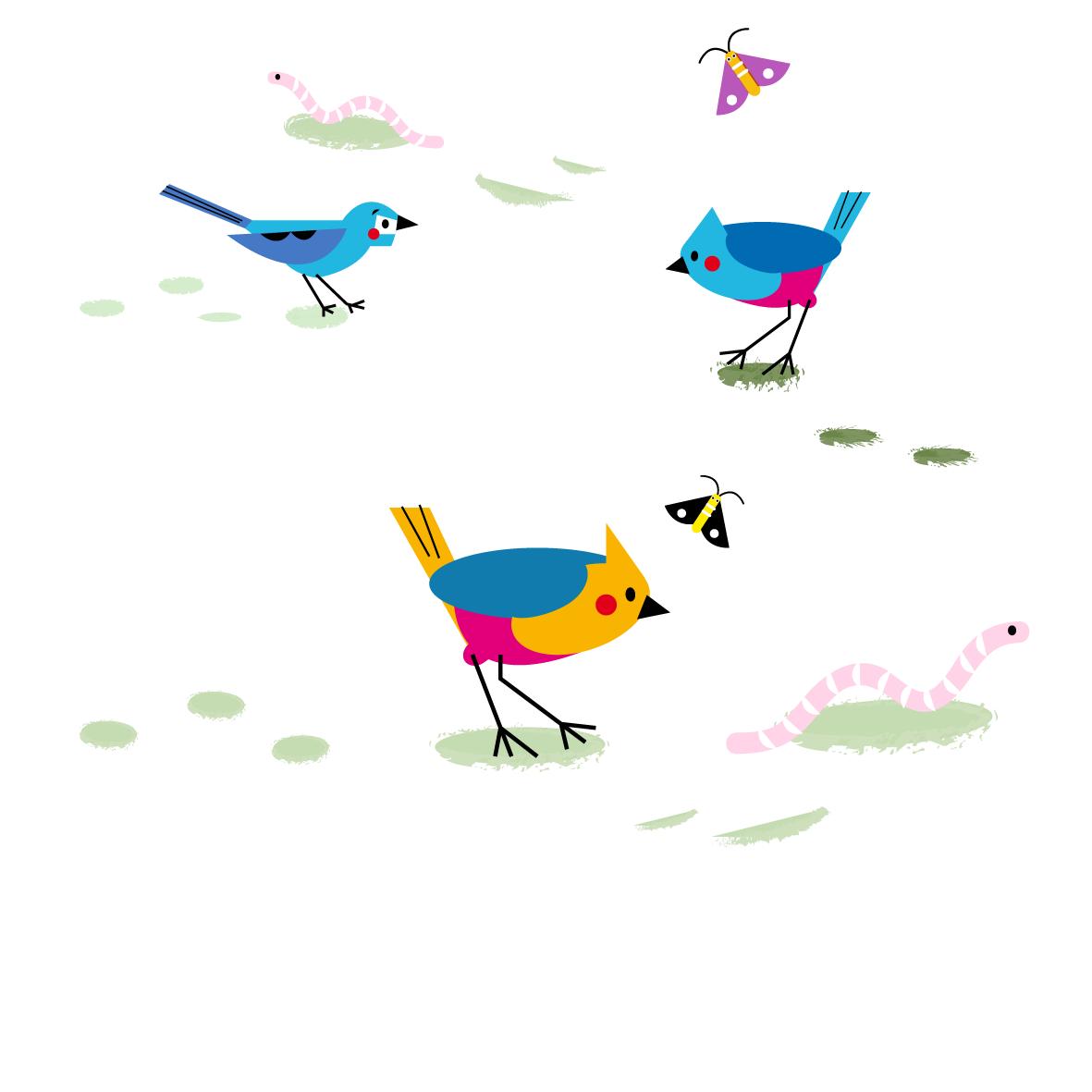 Birds - Vector Illustration © Emeline Barrea, All rights reserved