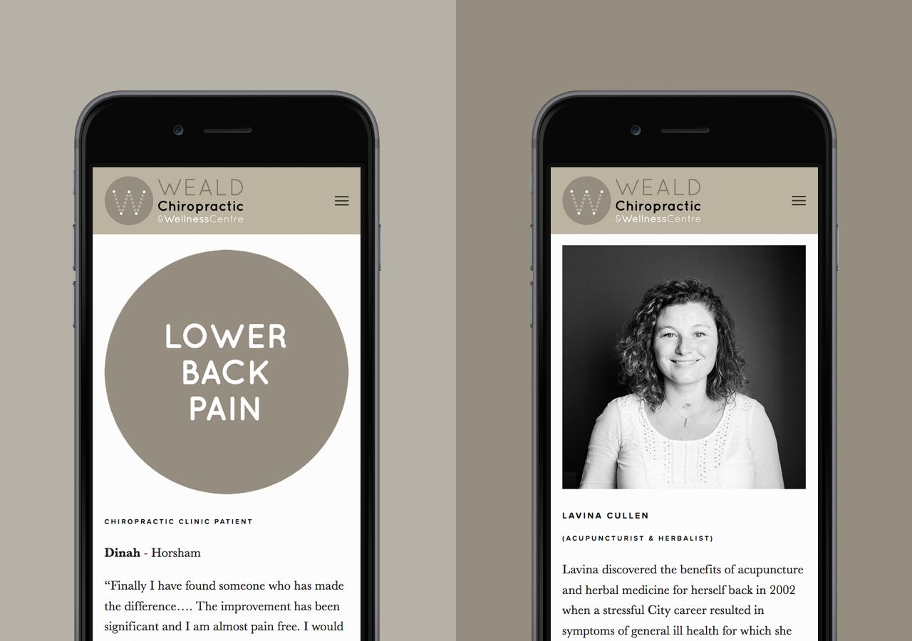 Chiropractic & Acupuncture business website design