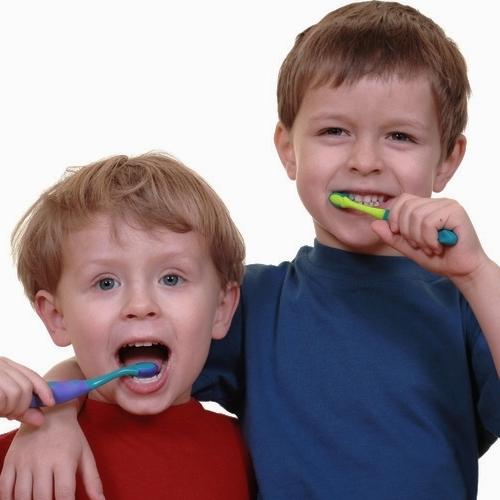 Synergy dental care membership plans biddulph.jpg