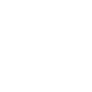 Fnl_Charlotte_Eagles_White.png
