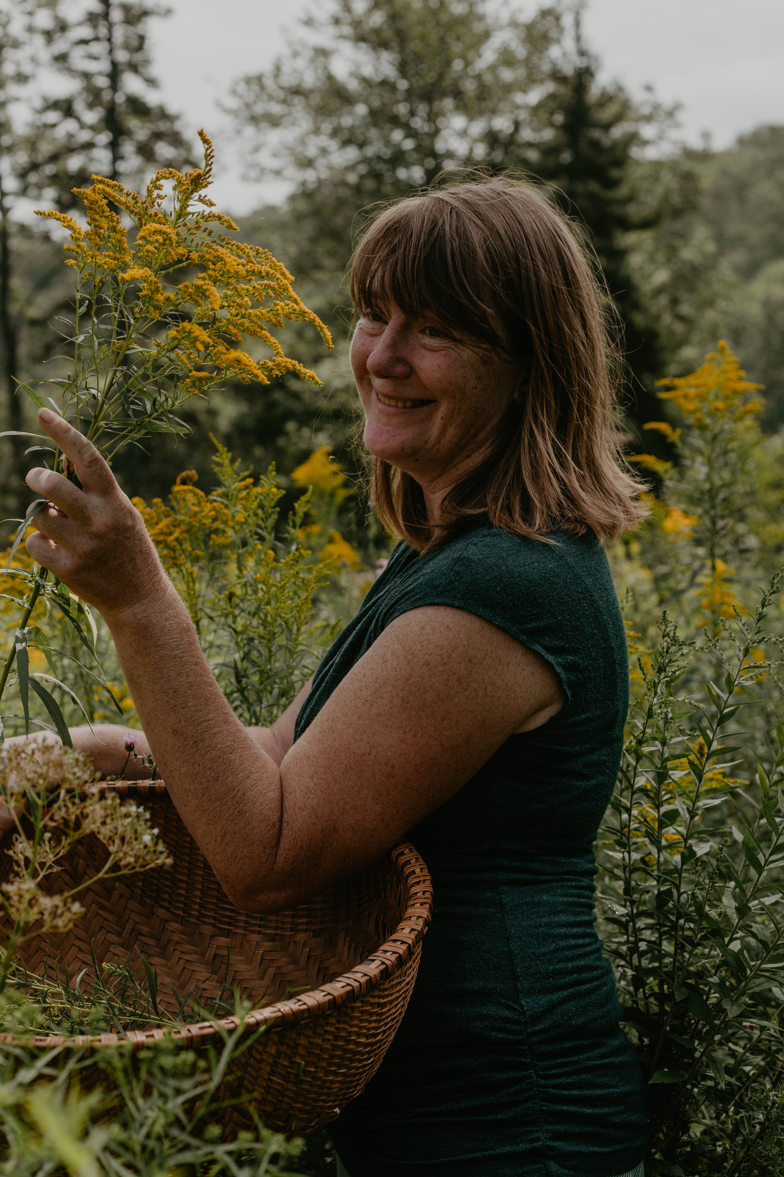 Brighid Doherty, founder of The Solidago School of Herbalism, teacher & community herbalist