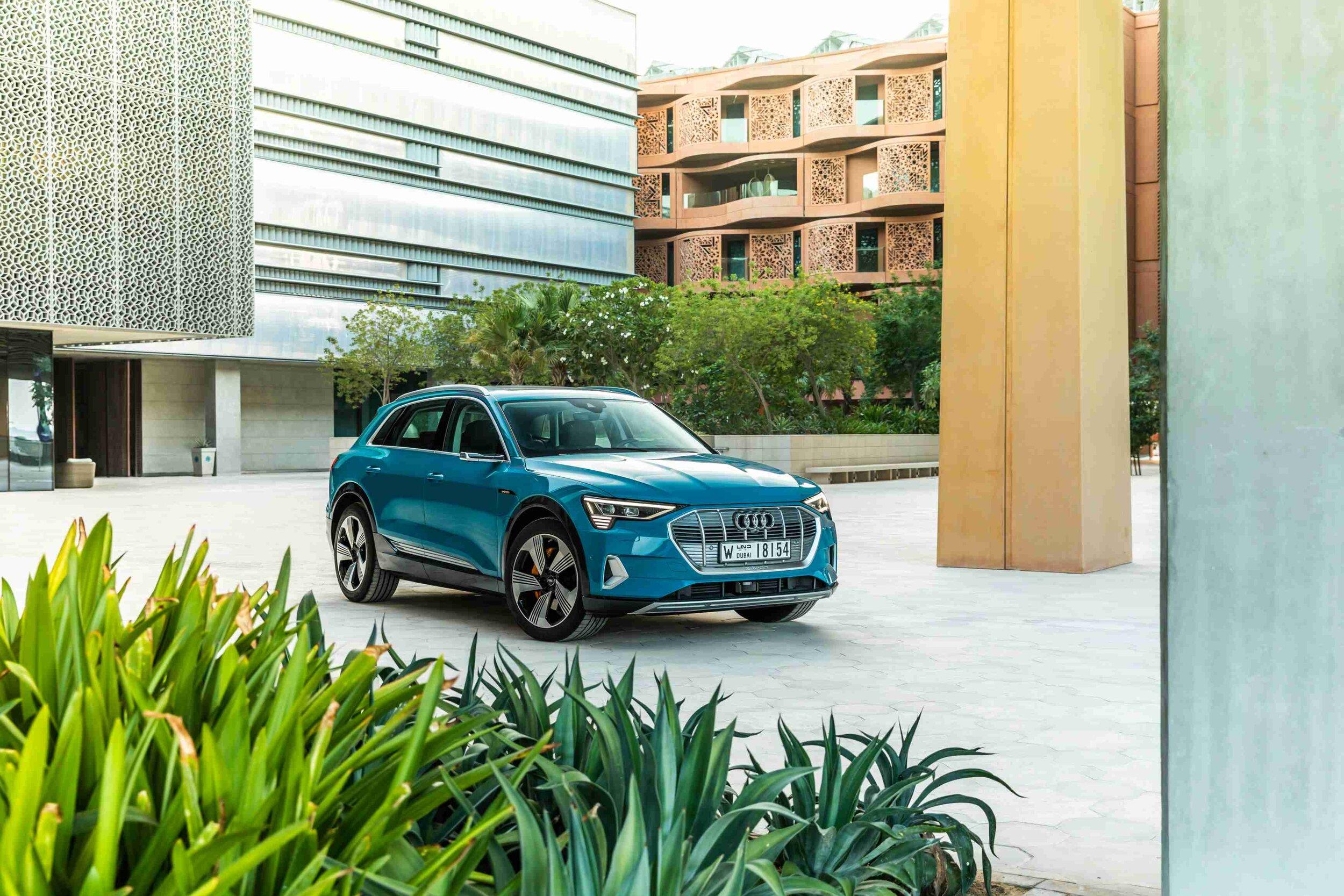 Ateles - Audi
