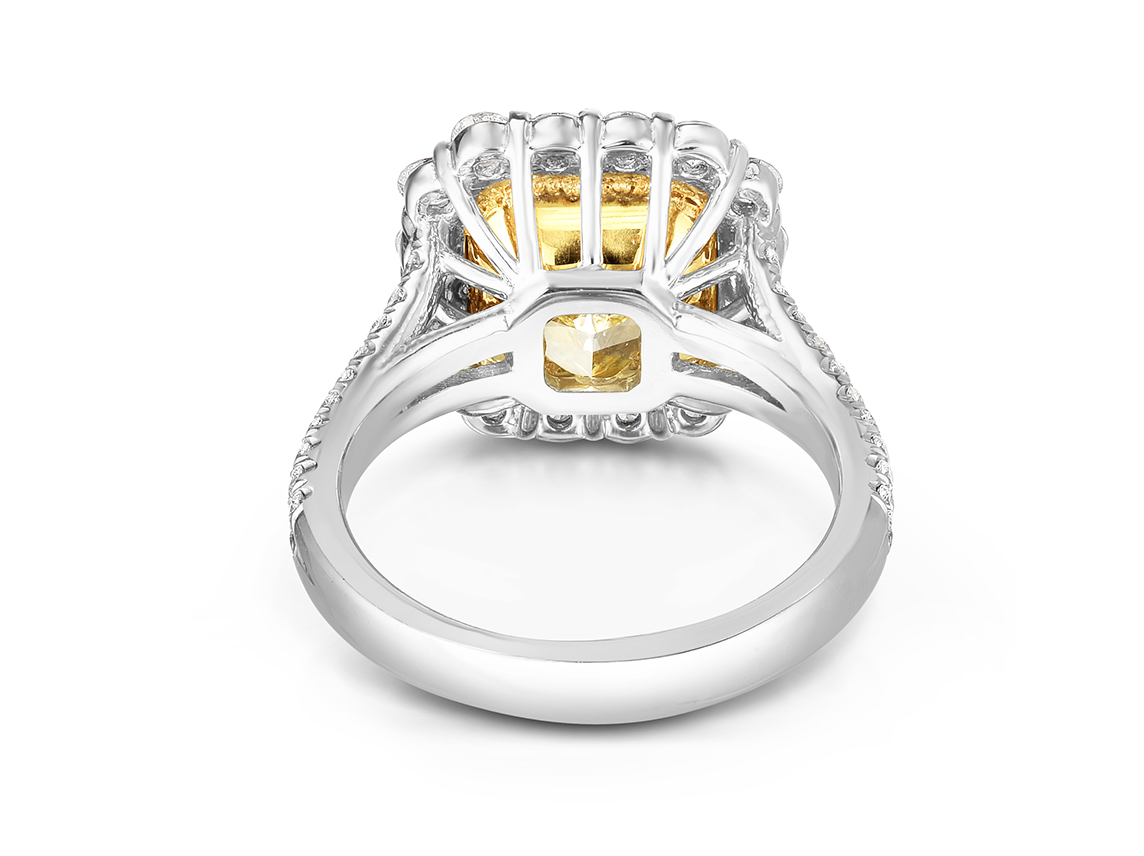 -Color-Ring-Double3.jpg