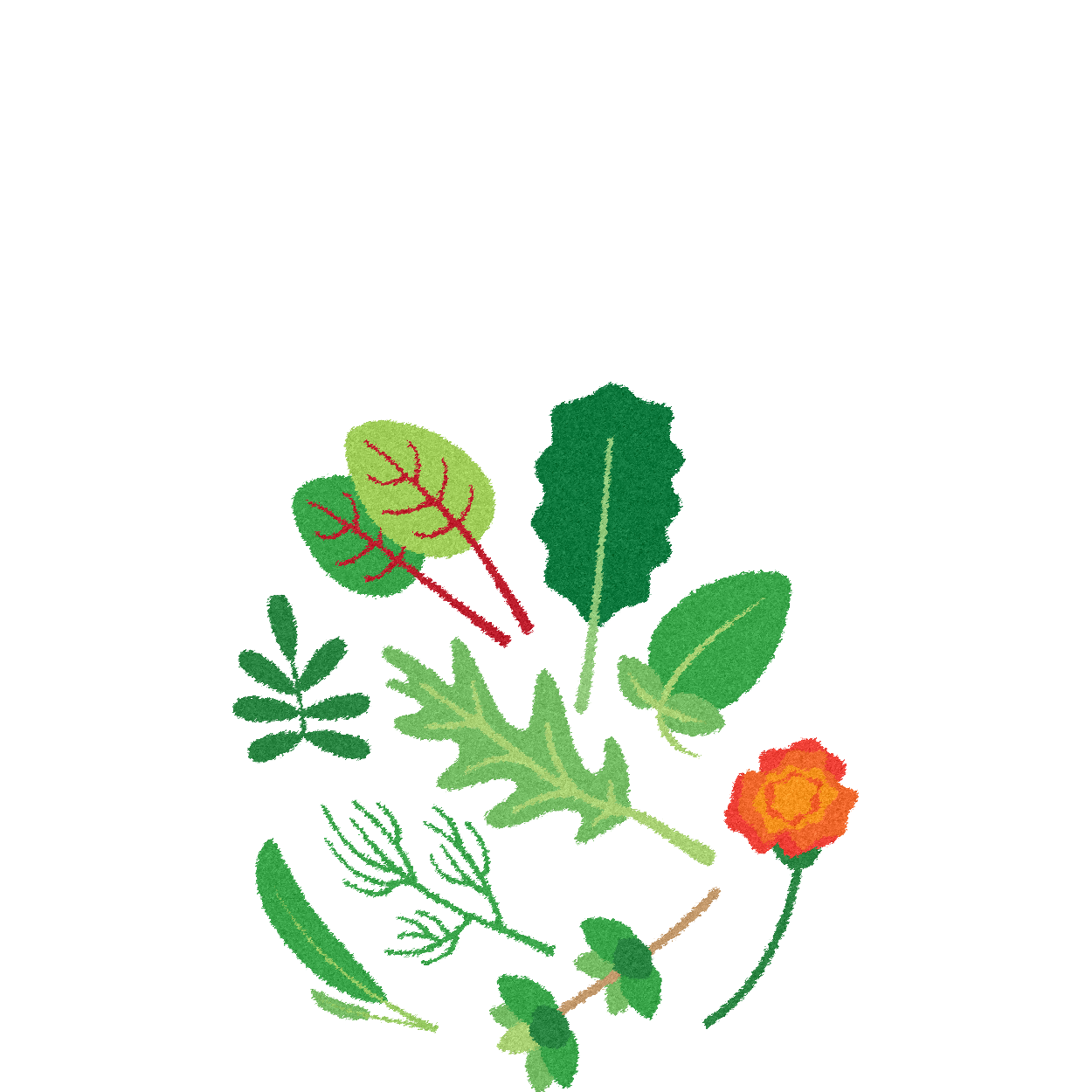 CorporateClientsPage_illustrations-02.png