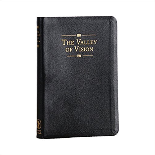 The Valley of Vision - This is a collection of puritan prayers, but it's actually more like poetry from heaven that feeds the soul. It's so beautiful, it moves me every morning, I read one a day.