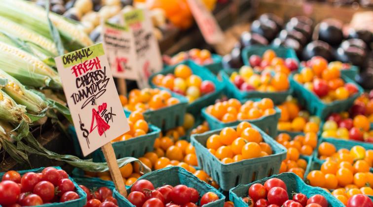 2-madison-outdoor-market.jpg