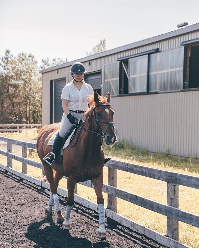 Trotting into the week 💨 it's funny because I have quite an odd schedule! My only days off are Monday and Saturday, as for my hours they are from 11-6/7 📆 It makes it tricky because I'm not able to see Lexington before I work so I have some late nights spent at the barn 🐴 but I don't mind!  Does anyone else have a schedule that strays from the usual 9-5 five days a week? 🤷🏻♀️