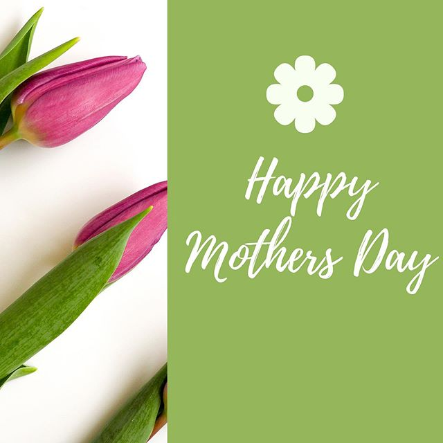 Happy Mother's Day to all the amazing moms out there! 🌷💕