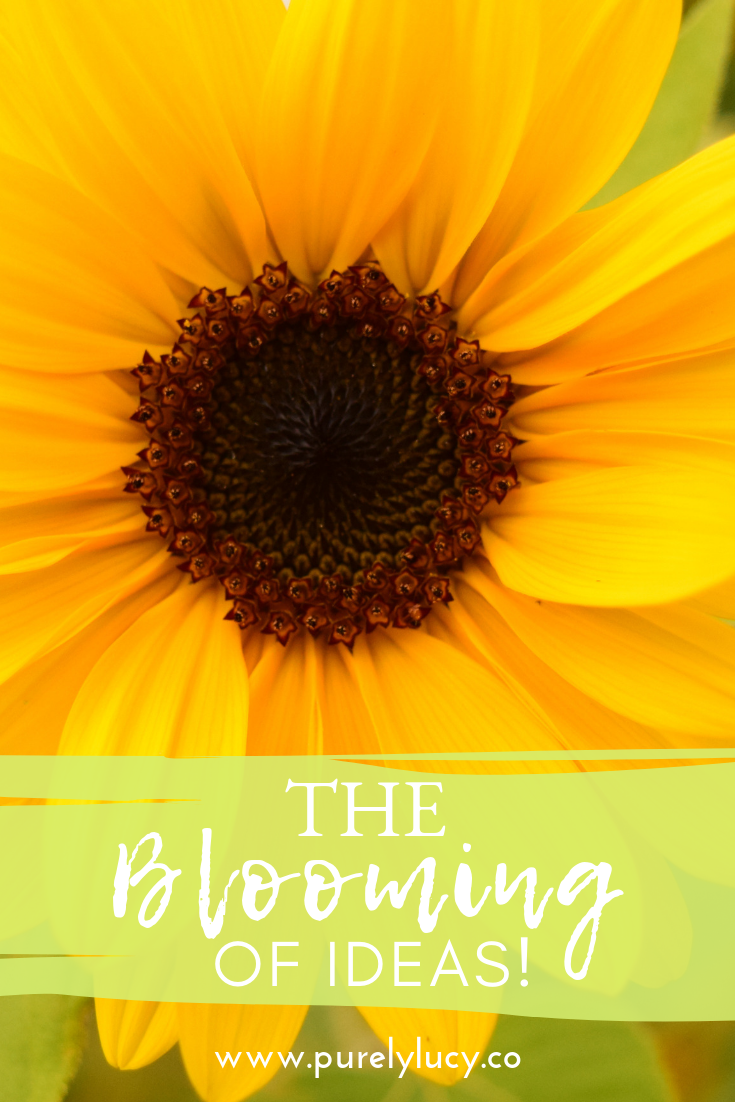 The Blooming of Ideas || @purelylucy