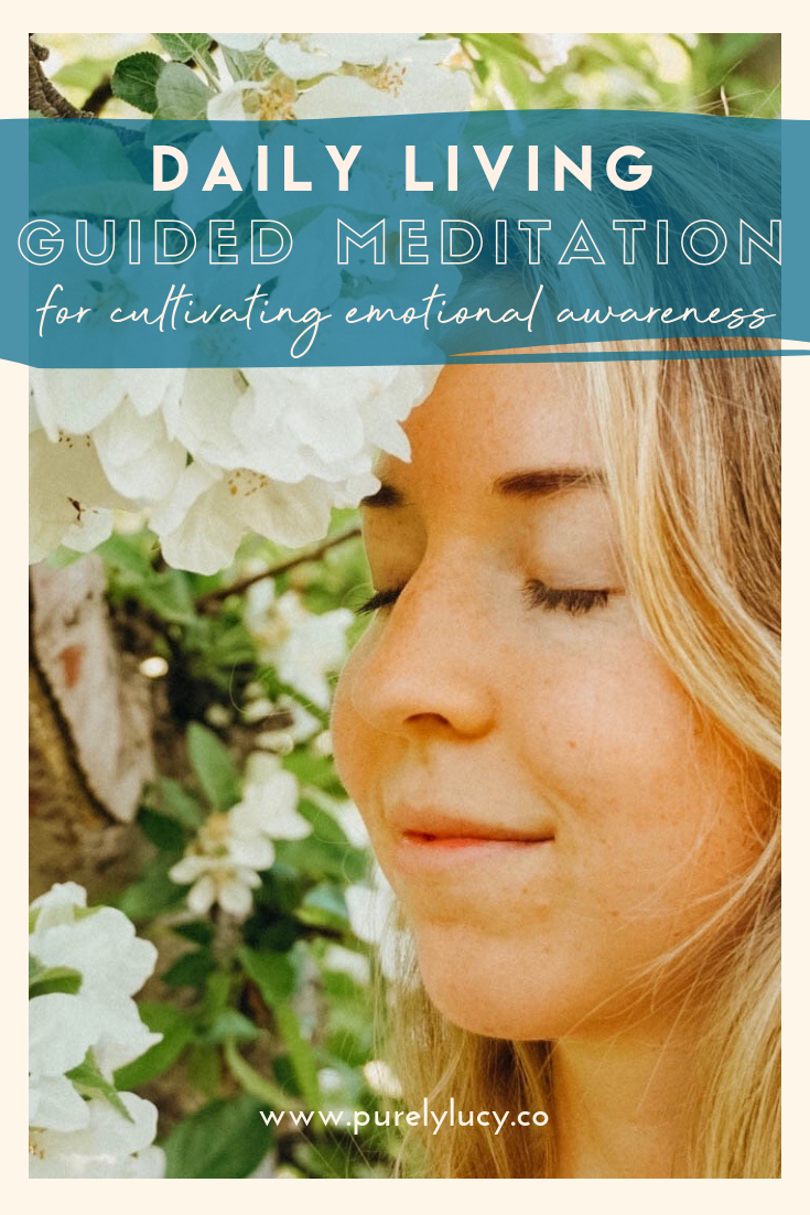 Daily Living Meditation || Cultivating Emotional Awareness