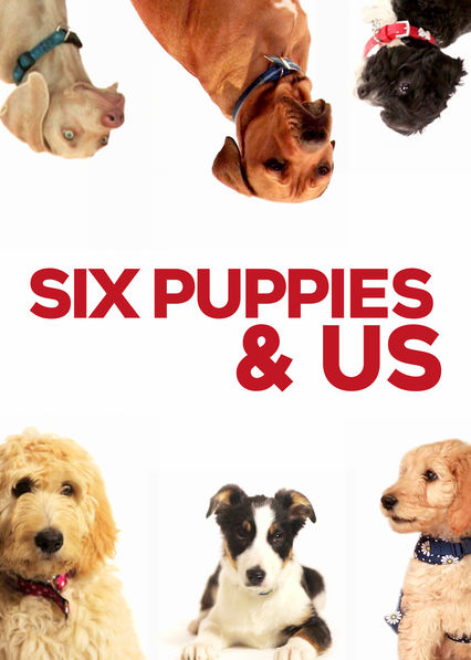 Six Puppies and Us - Well, I think the title says it all. This British show follows six new puppy owners and all their trials and joys as they go about raising their new pups! I actually found myself learning a lot about dog training as I watched and I wished I had know many of these things prior to getting a dog. Definitely worth the watch!