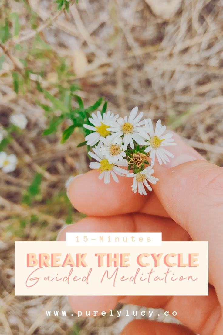 Break the Cycle.jpg