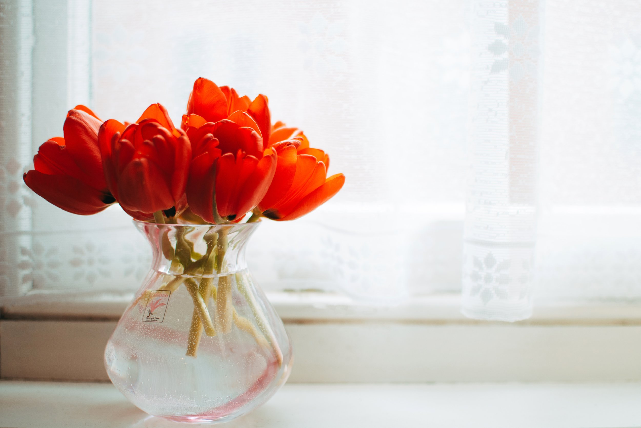 bouquet-bunch-of-flowers-color-858192.jpg